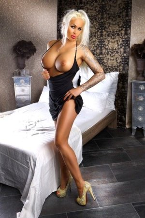 escort huren sex contact websites